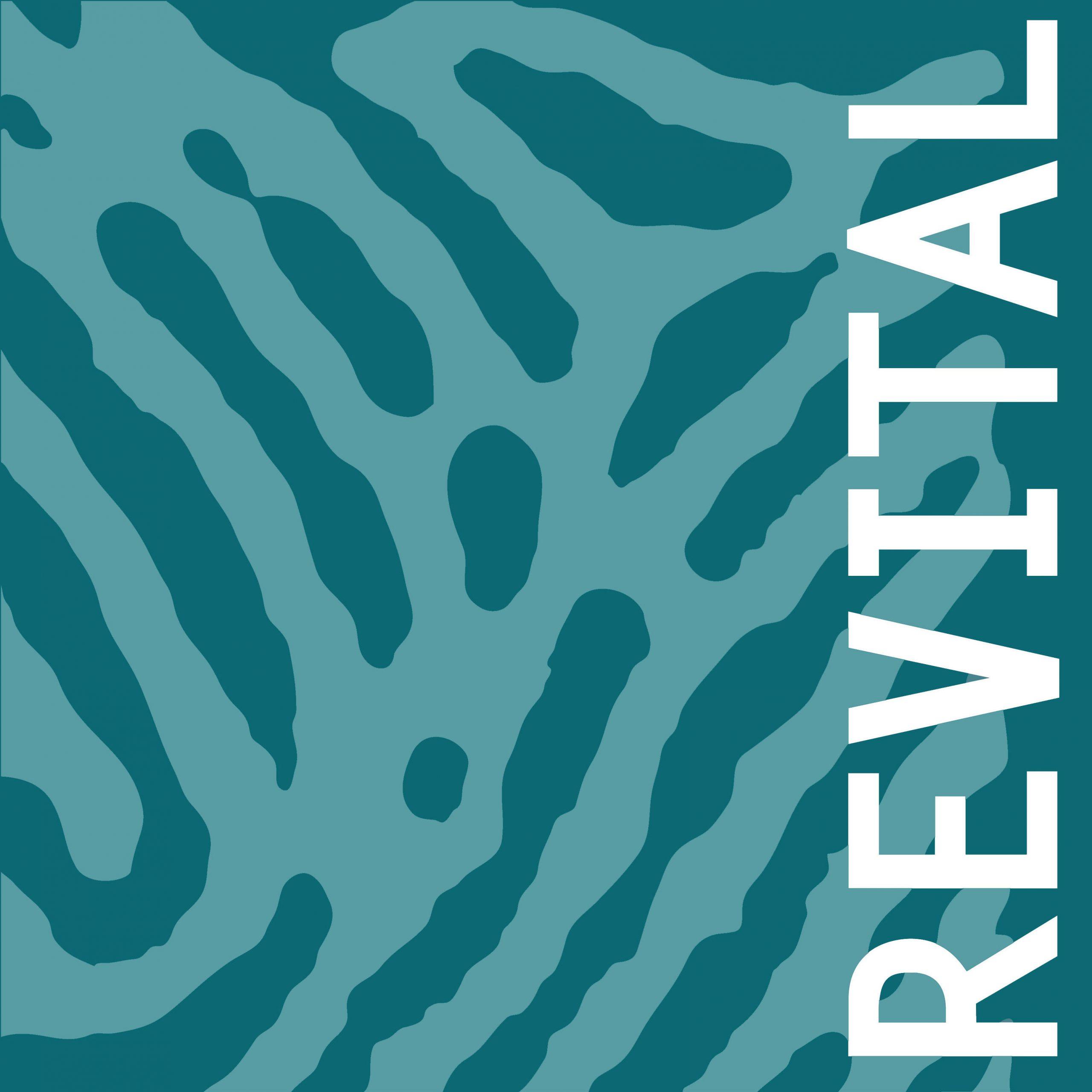 Revital_Partner_LOLA-Alpine-Safety-Management