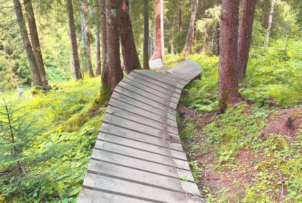 Digital Trail Score Card I LO.LA Alpine Safety Management